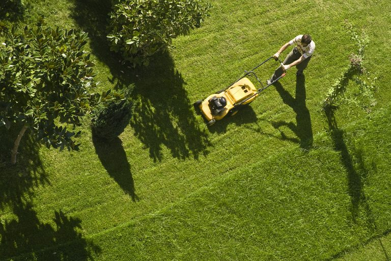 Lawn mowing Insurance