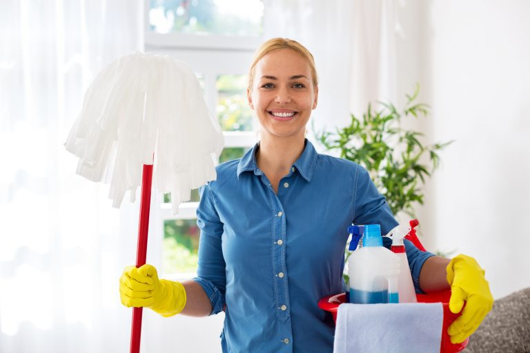 Insurance for Domestic Cleaners